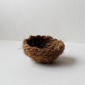 Cocosnest klein